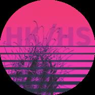 Logo Hybrid Knowledge